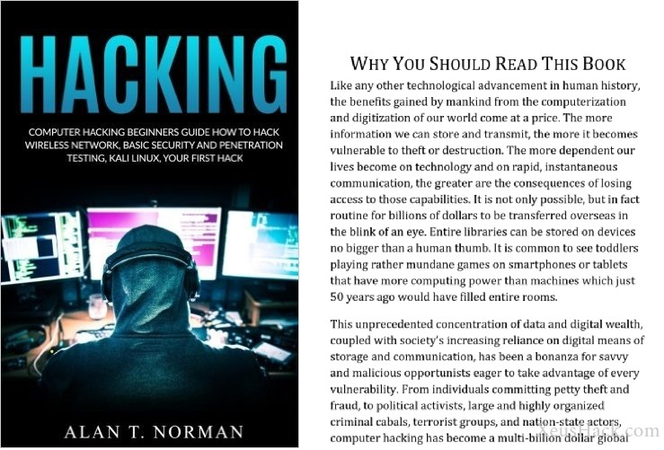 Book cover and review of Beginners Guide on How to Hack Wireless Network