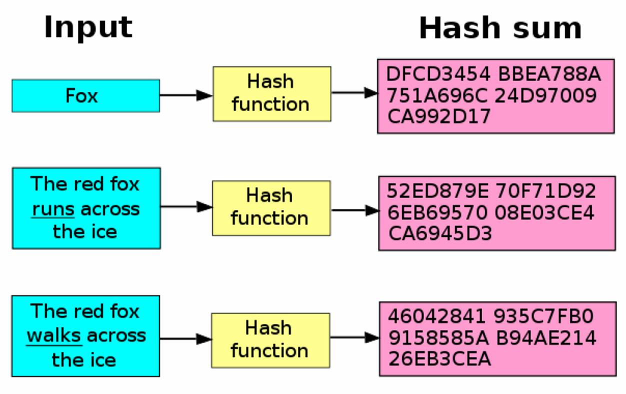 What Is a Hash? | Hacking Tutorials by Xeus